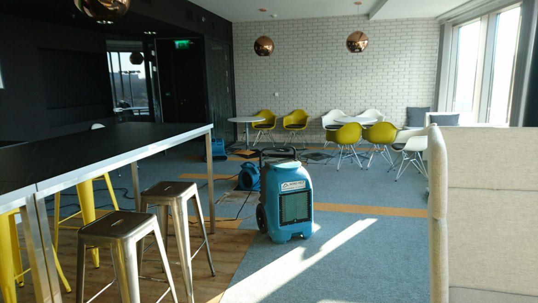 Ozonowanie pomieszczeń jako skuteczny sposób na pozbycie się drobnoustrojów