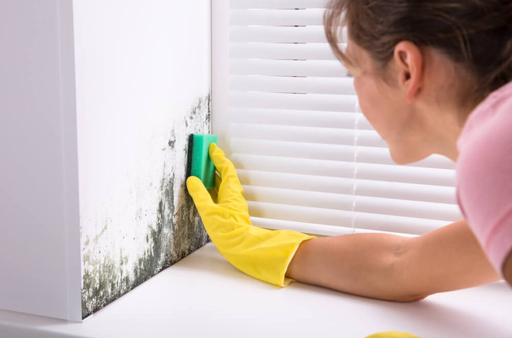 Czynniki sprzyjajace powstawaniu wilgoci w mieszkaniu