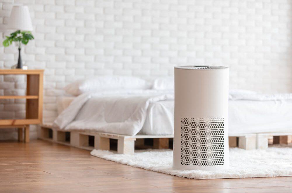 zdrowe powietrze w domu